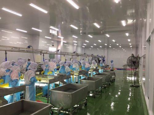 nơi bán trần nhựa nhà máy thủy sản Sóc Trăng -