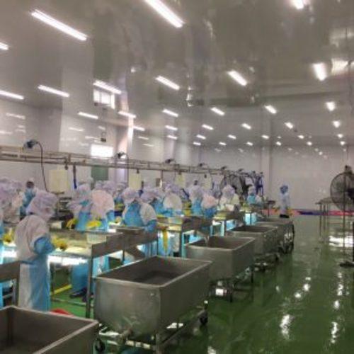 thi công trần nhựa công nghiệp nhà máy thủy sản
