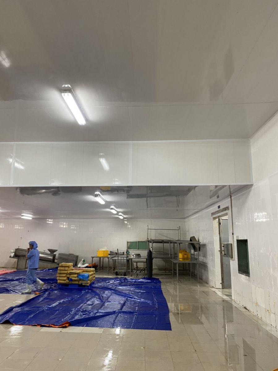trần nhà xưởng chế xuất thực phẩm