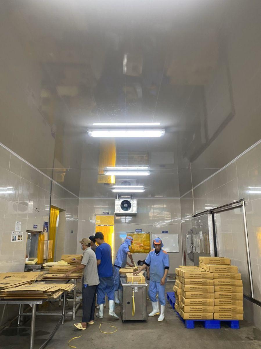 trần nhựa cho khu chế xuất thực phẩm